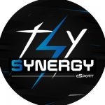 Logo Team Synergy
